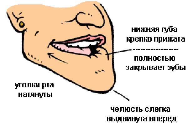 те, картинки как научиться свистеть говорить препарате диаскинтест